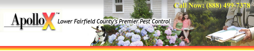 ApolloX Pest Control Services, Stamford CT